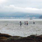 mariscadoras-banco-marisquero-poio-1