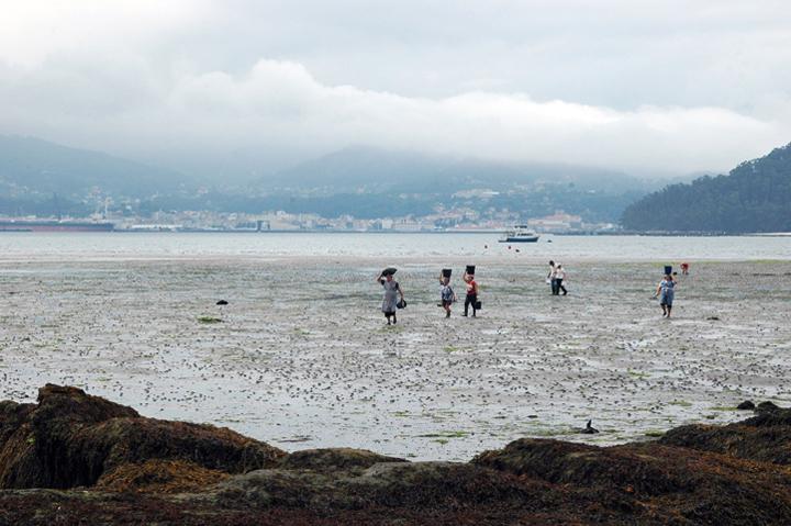 La actividad pesquera y marisquera en el GALP Ría de Pontevedra