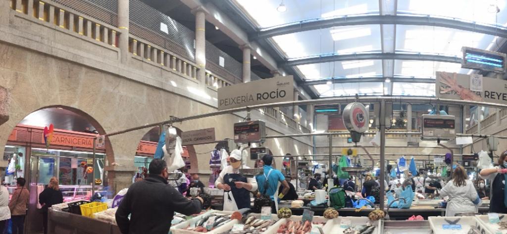 """O'Bioco: Visita guiada por la Plaza de Pontevedra – """"BIOQUING"""""""